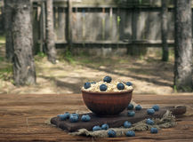 Oatmeal with blueberry Stock Image
