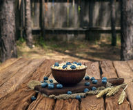 Oatmeal with blueberry Stock Photo