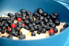 Oatmeal with blueberry. In tour Royalty Free Stock Images