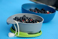 Oatmeal with blueberry. In tour Stock Photos