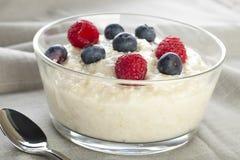 Oatmeal Breakfast Royalty Free Stock Photos
