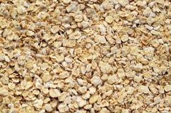 Oatmeal Stock Image