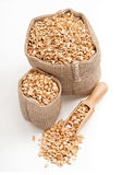 Oatmeal in burlap sack with wooden spoon isolated on white background. Stock Photo