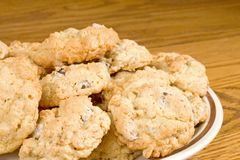 Oatmeal Chocolate Chip Cookie royalty free stock images