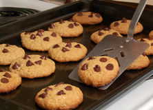 Oatmeal Chocolate Chip Cookies Royalty Free Stock Photography