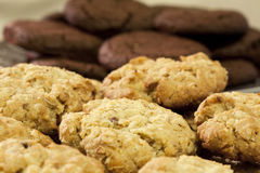Oatmeal and chocolate cookies Royalty Free Stock Images