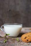 Oatmeal ciastka na zgłaszają mleko w szklanej filiżanki i wiosny gałąź Fotografia Stock