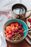 Oatmeal with cocoa, raspberries and strawberries. Chocolate oatmeal with raspberries and strawberries Royalty Free Stock Photos