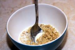 Oatmeal com leite Fotos de Stock