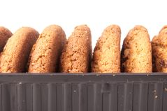 Oatmeal cookie Stock Image