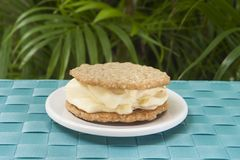 Oatmeal Cookie and Vanilla Ice Cream Sandwich Outside Stock Photos