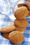 Oatmeal cookies Royalty Free Stock Images