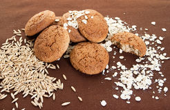 Oatmeal cookies. With oats seeds royalty free stock photo