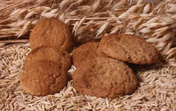 Oatmeal cookies. Oat kernels, ears, and oatmeal cookies Stock Photos