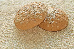 Oatmeal cookies. With sesame background Stock Photography