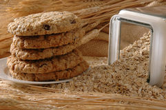 Free Oatmeal Cookies Royalty Free Stock Images - 2780959