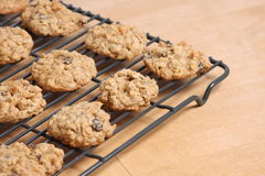 Oatmeal Cookies Stock Photos