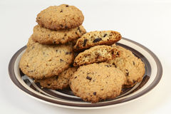 Oatmeal cookies with chocolate on crockery plate Royalty Free Stock Images