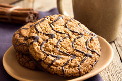 Oatmeal cookies with chocolate Royalty Free Stock Photography
