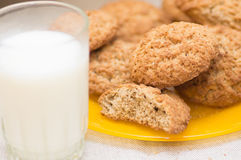 Oatmeal cookies Royalty Free Stock Photos