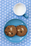 Oatmeal cookies with cup of milk Royalty Free Stock Images