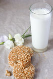Oatmeal cookies. And a glass of milk Stock Photography