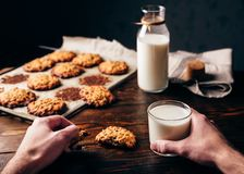 Oatmeal Cookies and Glass of Milk. Homemade Oatmeal Cookies. Male Hands Hold a Cookie and Glass of Milk. Some Cookies on Parchment Paper with Bottle on Backdrop Stock Photos
