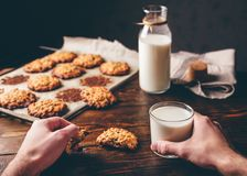Oatmeal Cookies and Glass of Milk. Homemade Oatmeal Cookies. Male Hands Hold a Cookie and Glass of Milk. Some Cookies on Parchment Paper with Bottle on Backdrop Stock Image
