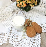 Oatmeal cookies with milk Royalty Free Stock Photo