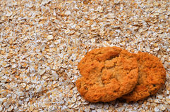 Oatmeal Cookies and Oatmeal with Copy Space Stock Image