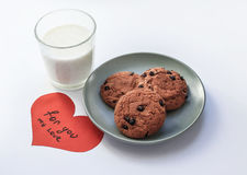 Oatmeal cookies with raisins a glass of milk Royalty Free Stock Photography