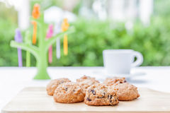 Oatmeal cookies served with hot coffee or tea in afternoon tea. Royalty Free Stock Image