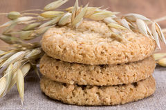 Oatmeal cookies and stalks of oats Royalty Free Stock Photography
