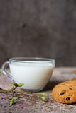 Oatmeal cookies on the table milk in a glass cup and spring branch Stock Photography