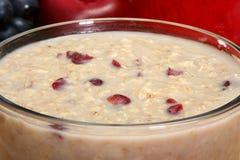 oatmeal craisin стоковое изображение
