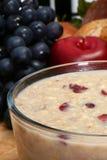 oatmeal craisin стоковая фотография rf