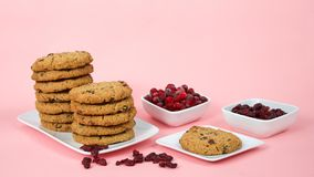 Oatmeal cranberry cookies on a plate with bowls of cranberries and craisins. Stacks of oatmeal cranberry cookies on a pink surface and background. Square bowls Royalty Free Stock Image