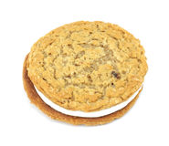 Oatmeal creme cookie Stock Photo