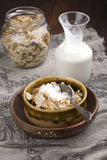 Oatmeal crunch with nuts and milk Stock Photography