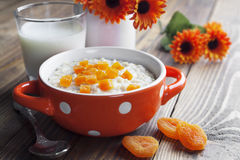 Oatmeal with dried apricots Stock Photos