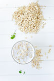 Oatmeal drink Stock Images