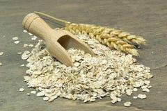 Oatmeal flakes Stock Photography