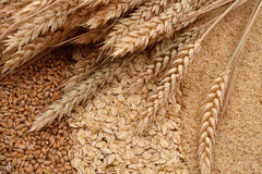 Oatmeal flakes, grain and wheat germ, ears of wheat on them. Hom Stock Images