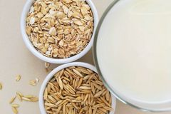 Oatmeal, oatmeal flakes and oats grains. royalty free stock images