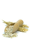 Oatmeal flakes with wooden scoop Royalty Free Stock Image