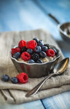 Oatmeal and Fruit Stock Images