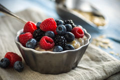 Oatmeal and Fruit Royalty Free Stock Photography