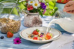 Oatmeal with fruit and milk Royalty Free Stock Photos