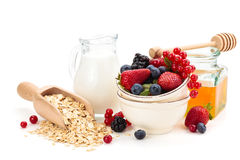 Oatmeal ingredients. Stock Photos