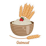 Oatmeal isolated on white background. Stock Image